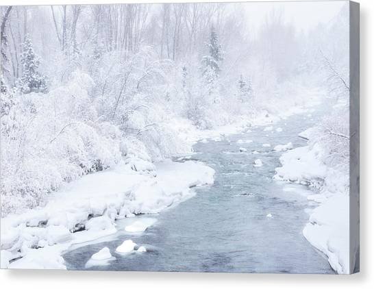 Snowy River Canvas Print