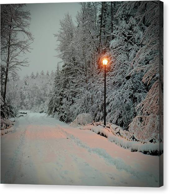 Canvas Print featuring the photograph Snowy Road by Samuel M Purvis III