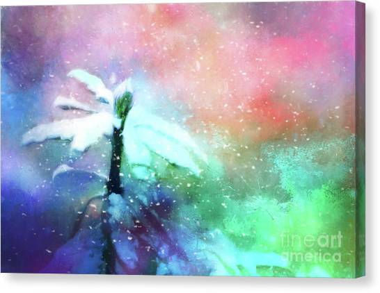 Snowy Winter Abstract Canvas Print
