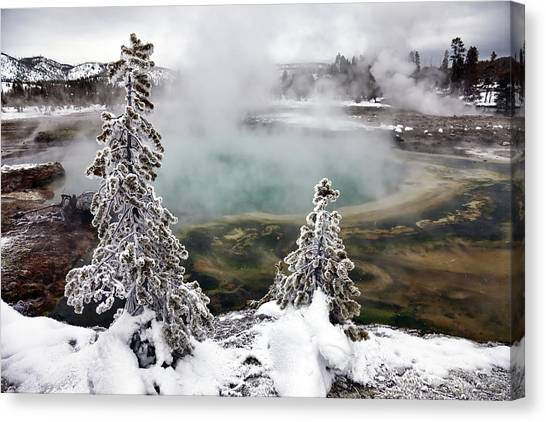 Yellowstone National Park Canvas Print - Snowy Yellowstone by Jason Maehl