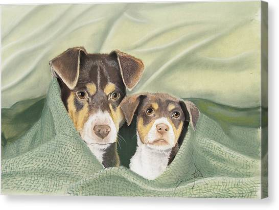 Snuggle Buddies Canvas Print by Barbara Keel