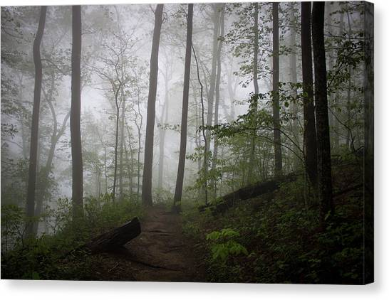 So Foggy Canvas Print