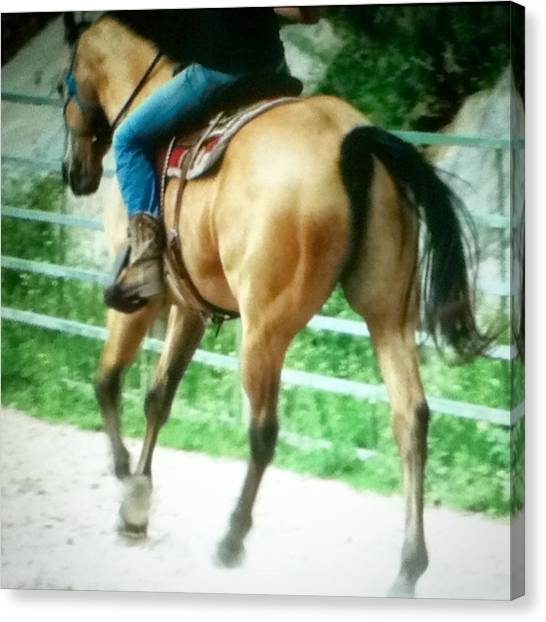 Saddles Canvas Print - So Ik This Is Blurry But I Love This by Neli Kvale