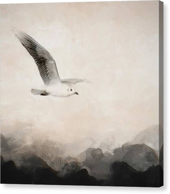 Canvas Print - Soar by Amanda Lakey
