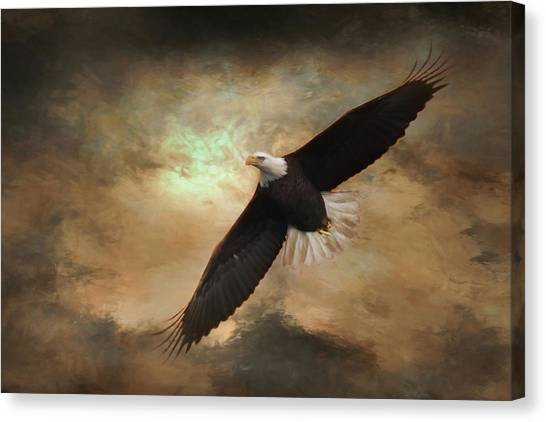 Eagle Scout Canvas Print - Soar by Lori Deiter