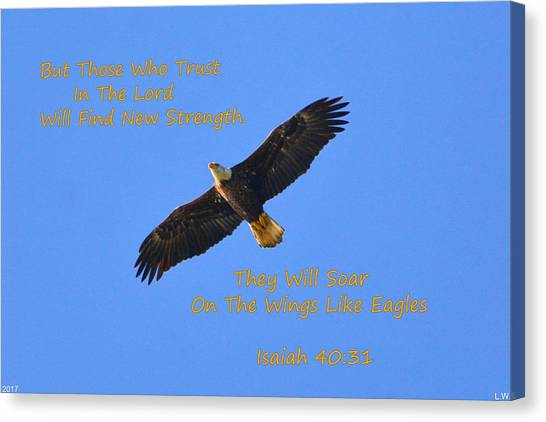 Soar On The Wings Like Eagles Isaiah 40 31  Canvas Print