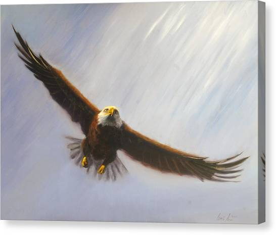 Soaring Eagle Canvas Print by Greg Neal