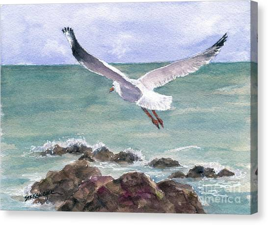 Soaring Gull Canvas Print