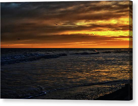 Soaring In The Sunset Canvas Print