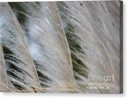 Canvas Print - Soft Breeze by Lisa Marie Towne