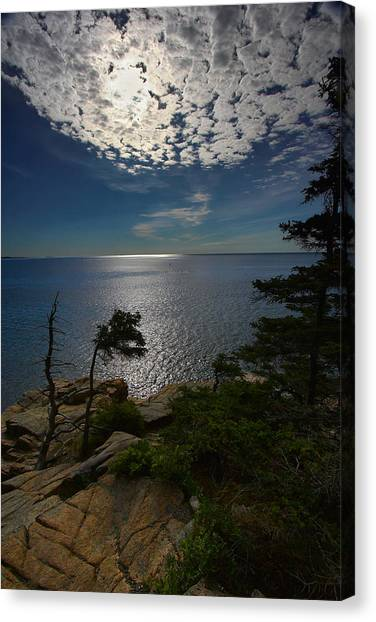 Soft Light On Otter Point Canvas Print