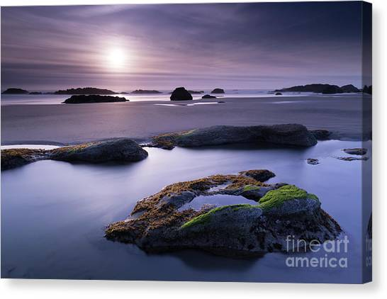 Low Tide Canvas Print - Soft Sunset by Masako Metz