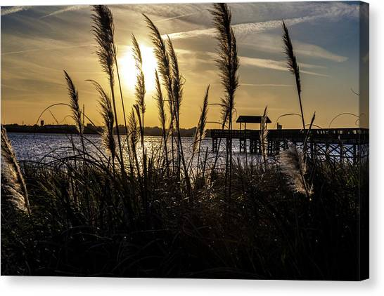 Soft Wind Canvas Print