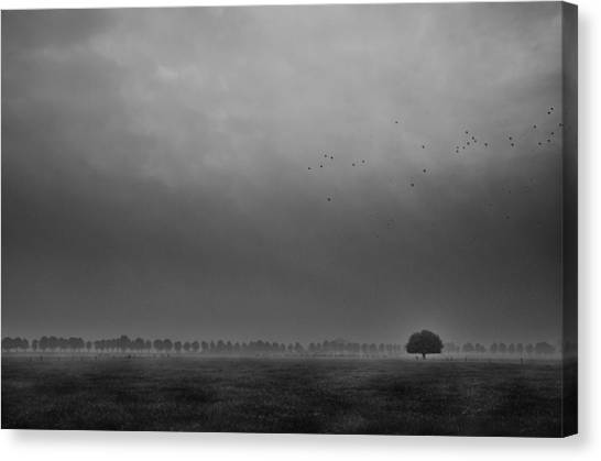 Mood Canvas Print - Solitaire by Michiel Hageman