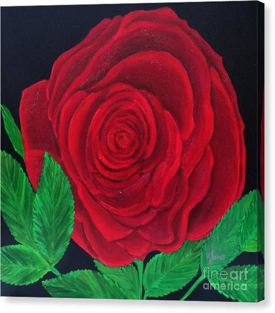 Solitary Red Rose Canvas Print