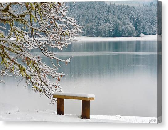 Solitary Snowscape Canvas Print