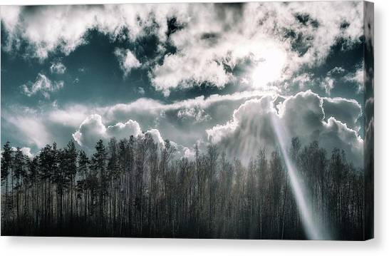 Solitude Forest. Sunychne, 2016. Canvas Print