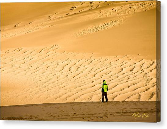 Solitude In The Dunes Canvas Print