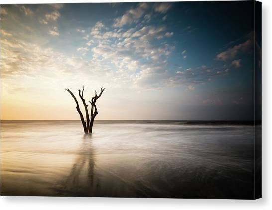 South Carolina Canvas Print - Solitude by Ivo Kerssemakers