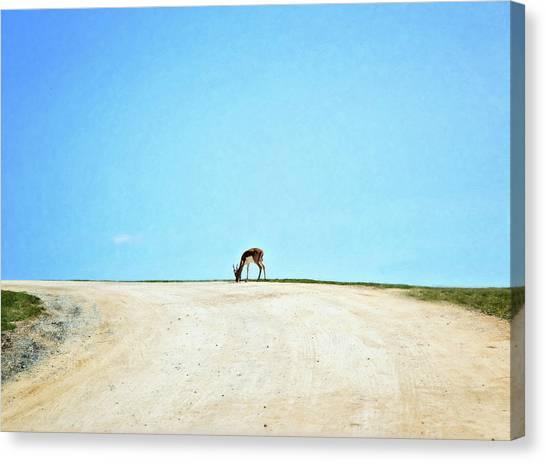 Canvas Print featuring the digital art Solitude by Sue Collura