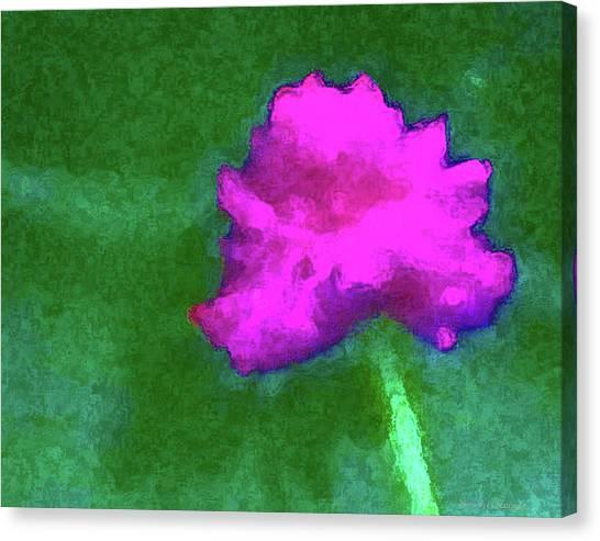 Solo Flower Canvas Print