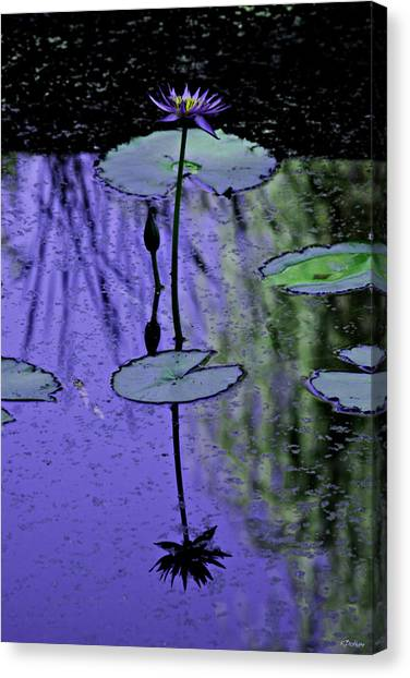 Soloist Canvas Print