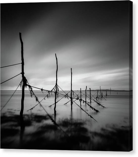 Fishing Poles Canvas Print - Solway Firth Fishing Nets by Dave Bowman