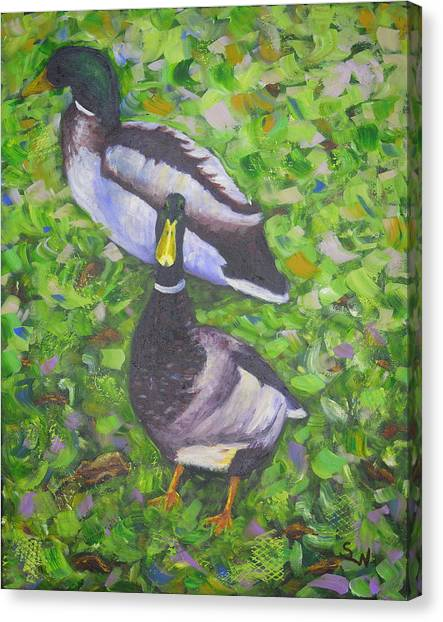 Somerset Ducks Canvas Print