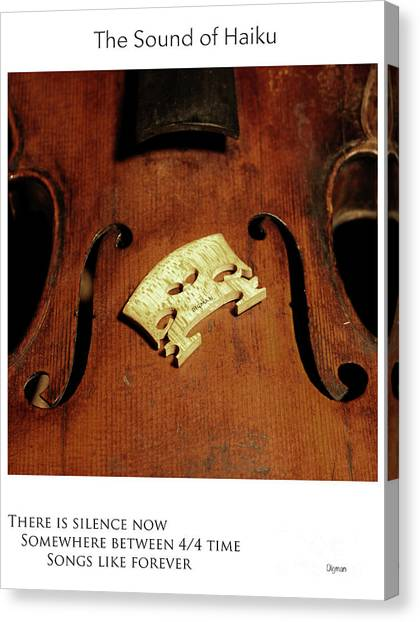 Songs Like Forever  Canvas Print by Steven Digman