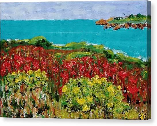 Sonoma Coast With Wildflowers Canvas Print