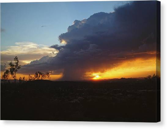 Sonoran Desert Thunderstorm Canvas Print