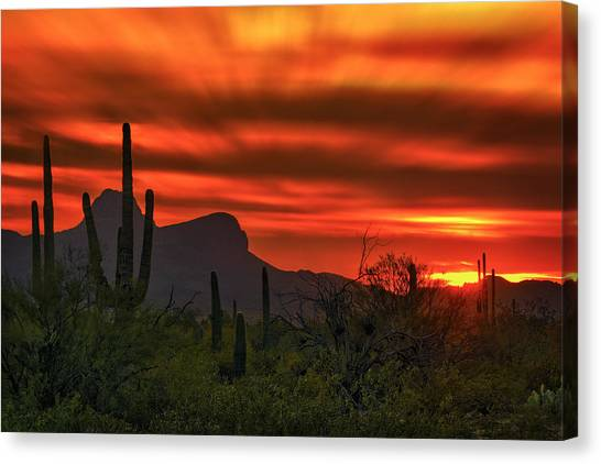 Sonoran Sunset H38 Canvas Print