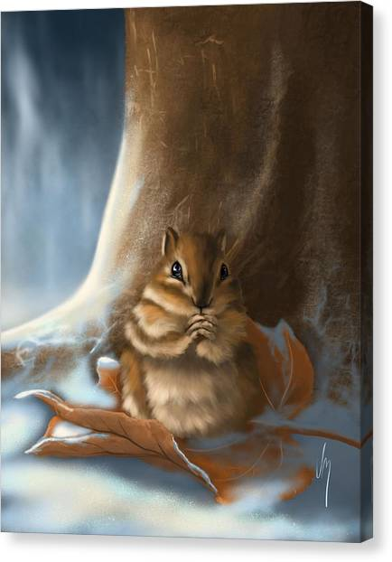Squirrels Canvas Print - Sorry by Veronica Minozzi
