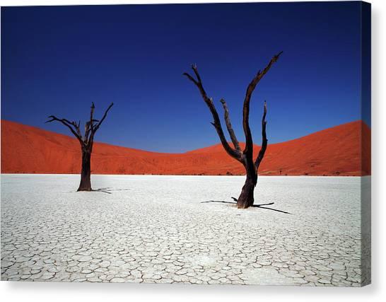 Namib Desert Canvas Print - Sossusvlei In Namib Desert, Namibia by Igor Bilic Photography