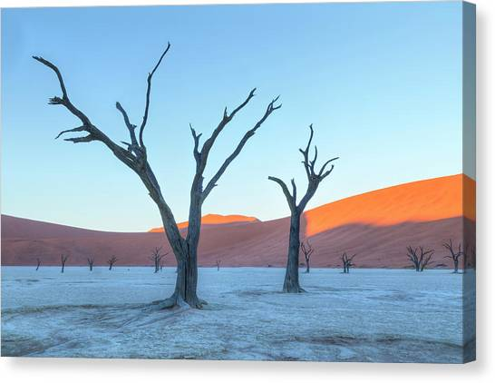 Namib Desert Canvas Print - Sossusvlei - Namibia by Joana Kruse