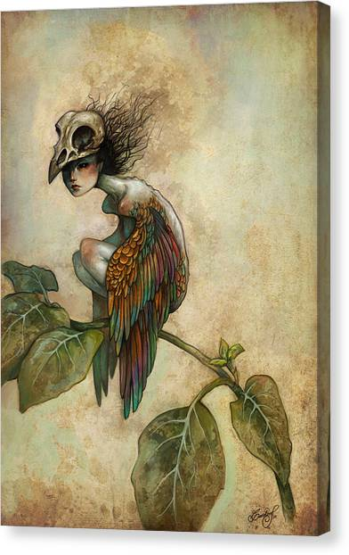 Skull Canvas Print - Soul Of A Bird by Caroline Jamhour