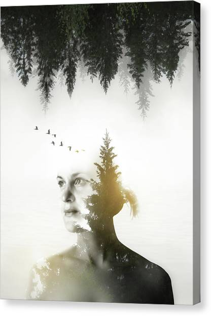 Soul Canvas Print - Soul Of Nature by Nicklas Gustafsson