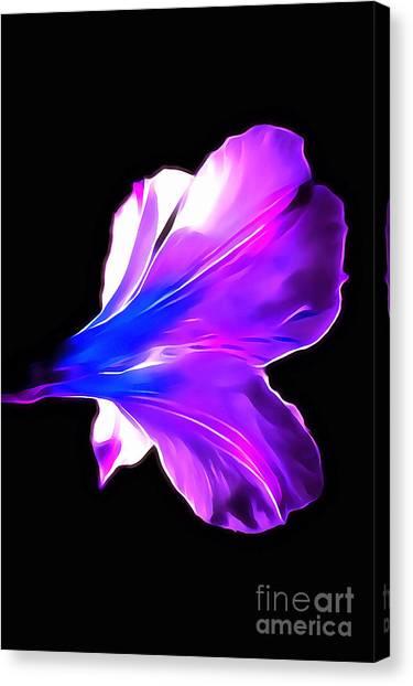 Amaryllis Canvas Print - Soul Shine by Krissy Katsimbras