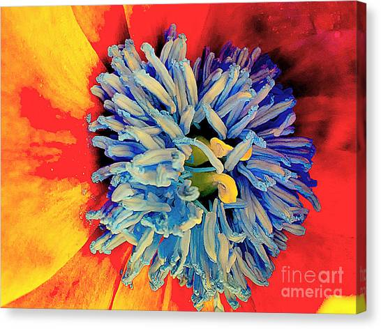 Soul Vibrations Canvas Print