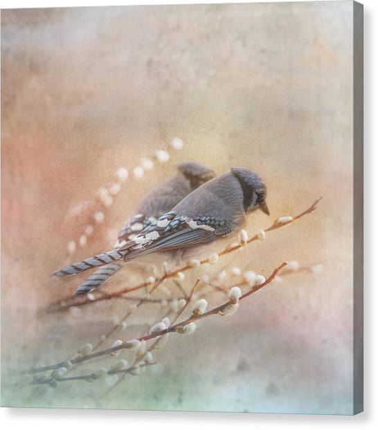 Avian Canvas Print - Soulmates by Susan Capuano