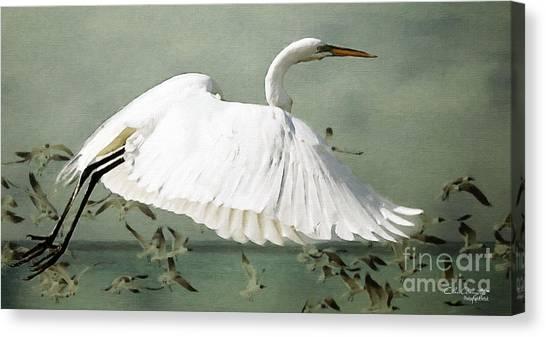 Souls Take Flight ... Canvas Print