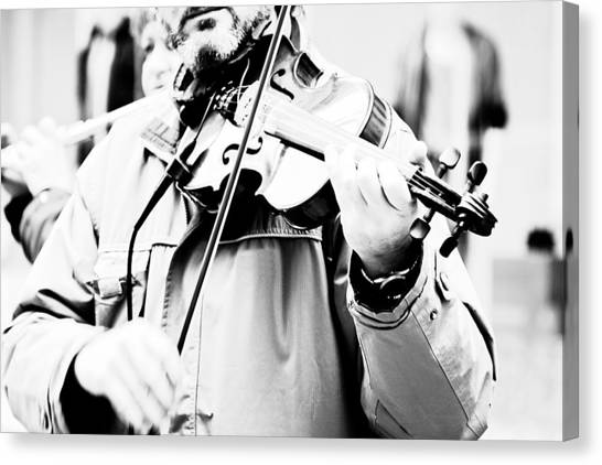 Violins Canvas Print - Sounds Of A Stranger by Gabriela Insuratelu