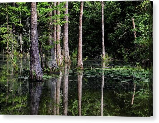 South Alabama Serenity Canvas Print by JC Findley