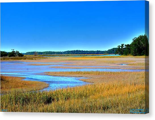 Canvas Print featuring the photograph South Carolina Lowcountry H D R by Lisa Wooten