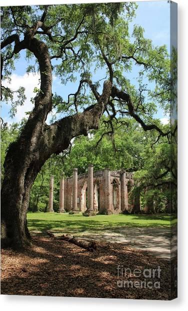 Civil War Site Canvas Print - South Carolina Spiritual by Carol Groenen