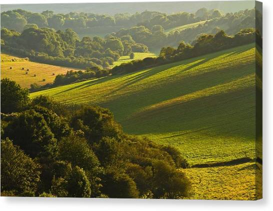 South Downs Canvas Print