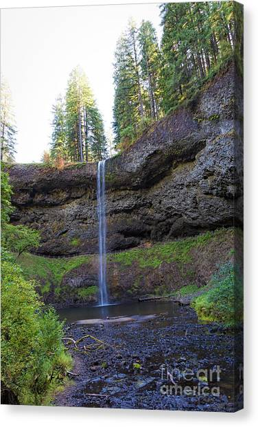 Franklin D. Roosevelt Canvas Print - South Falls by Jon Burch Photography