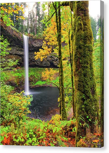 South Silver Falls Canvas Print