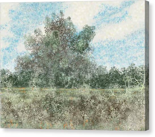 South Texas Brush Country I Canvas Print