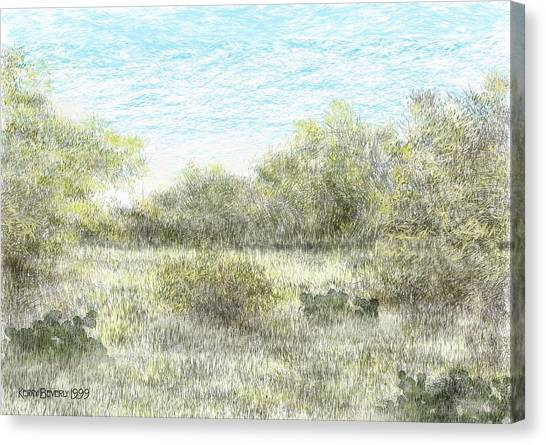 South Texas Brush Country II Canvas Print
